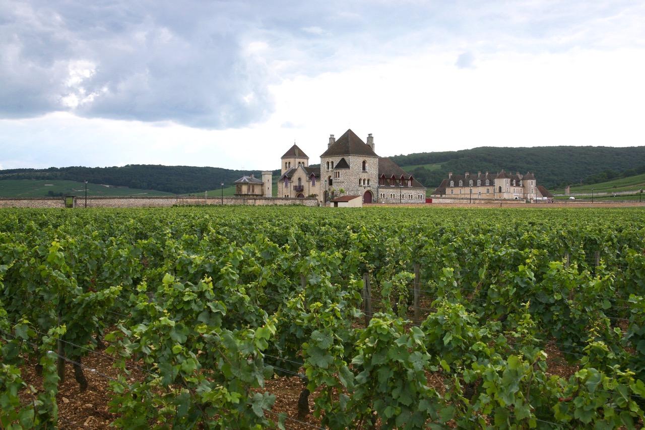 Chateau de La Tour and vineyards in Vougeot