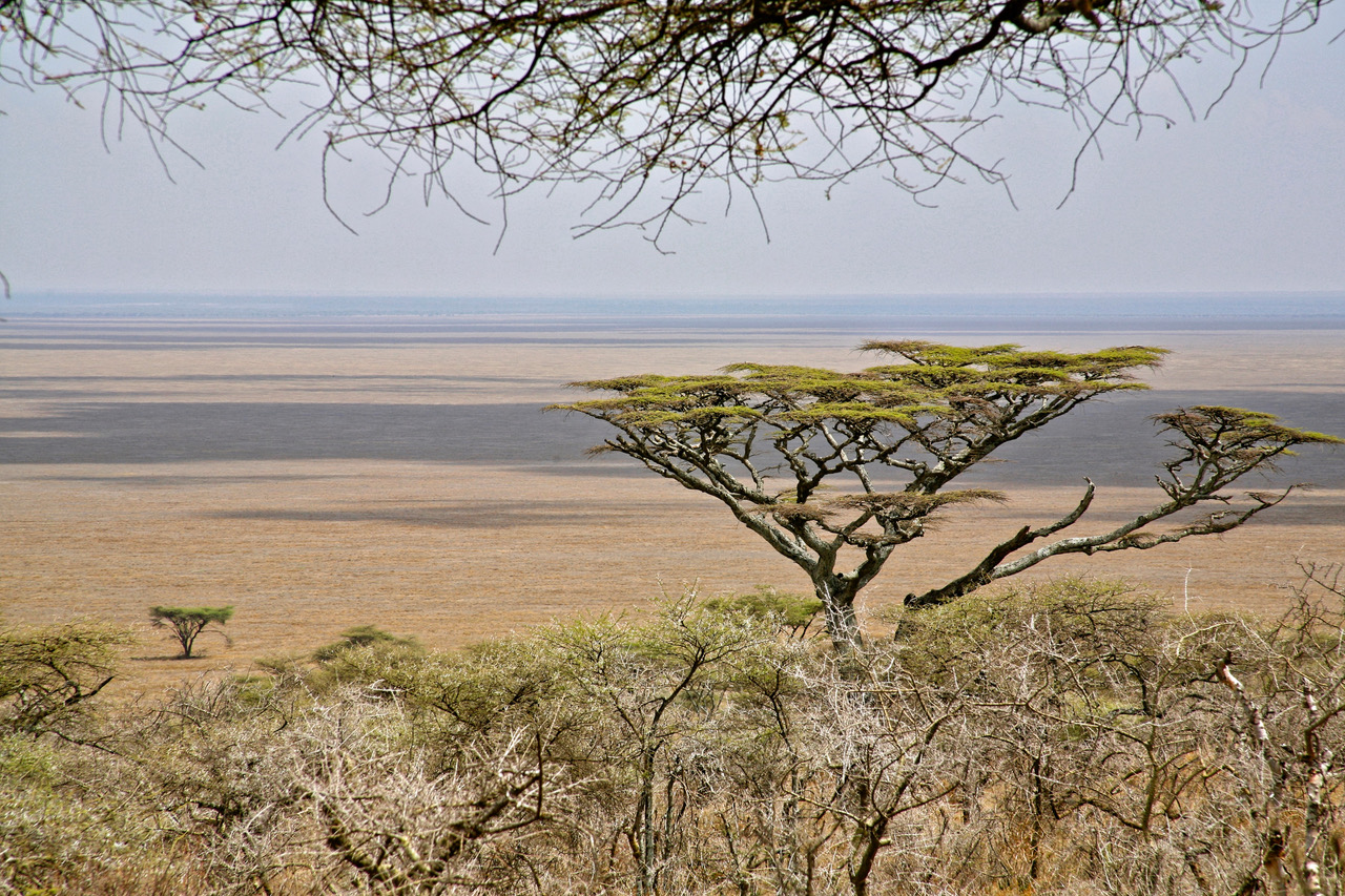 The amazing landscapes of Tanzania