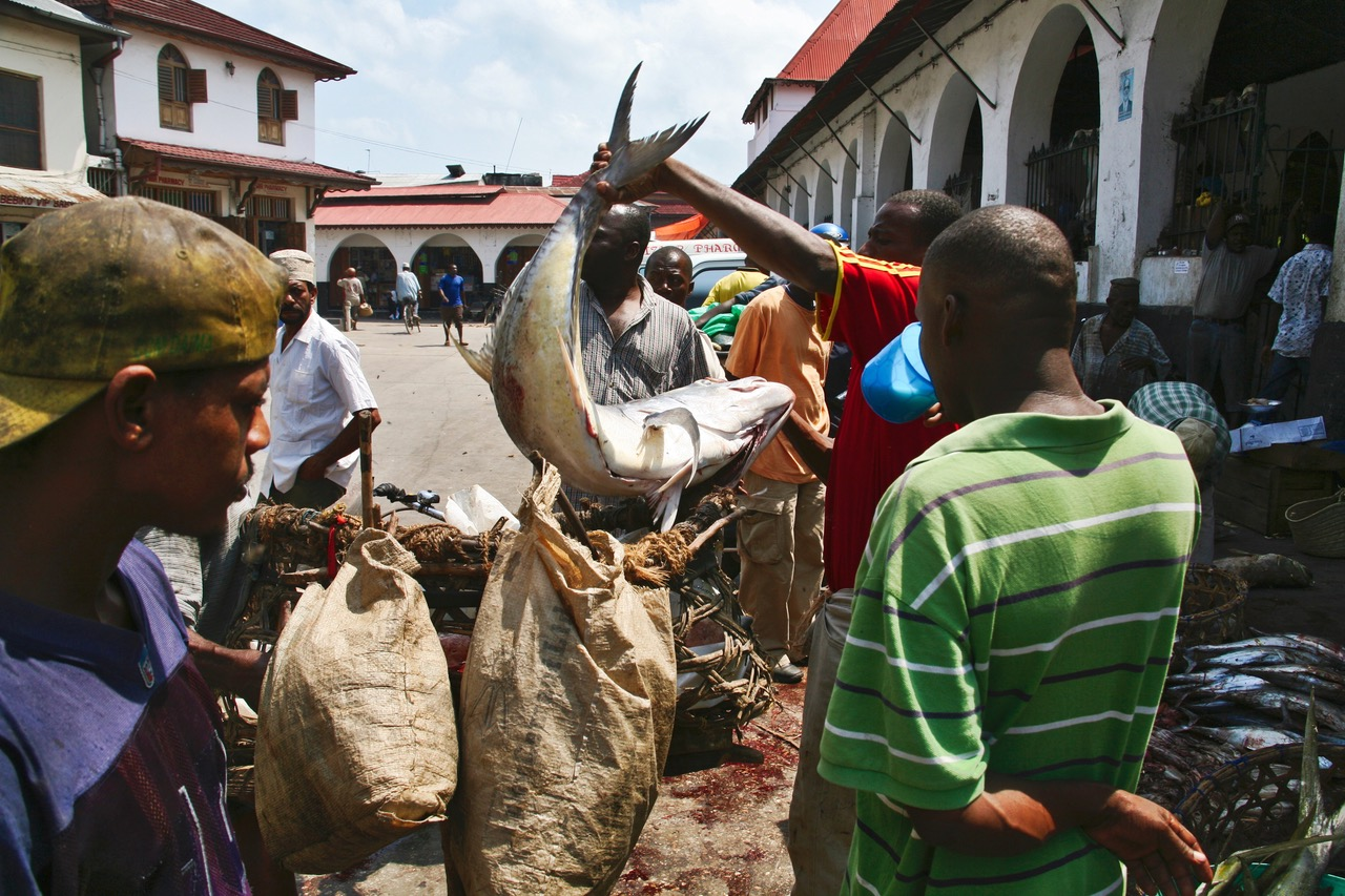 Catch of the day at local market in Stone Town, Zanzibar