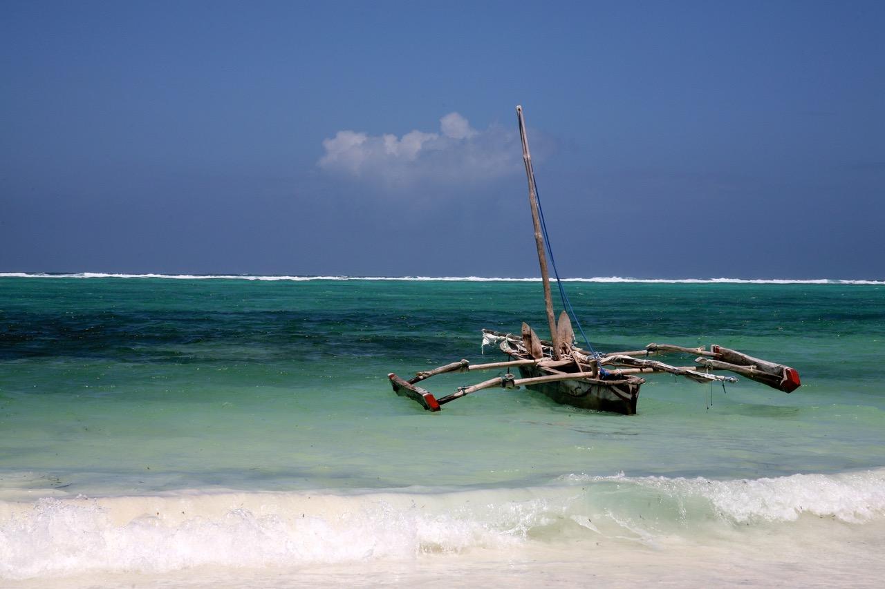 Green coast line of Paje, Zanzibar