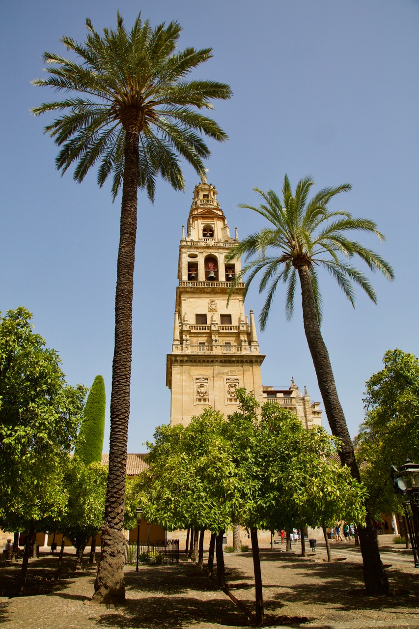 Patio de los Naranjos, Mezquita Catedral, Córdoba