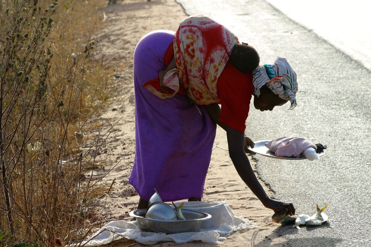 Woman with baby selling fish on the side of the road, Gambia