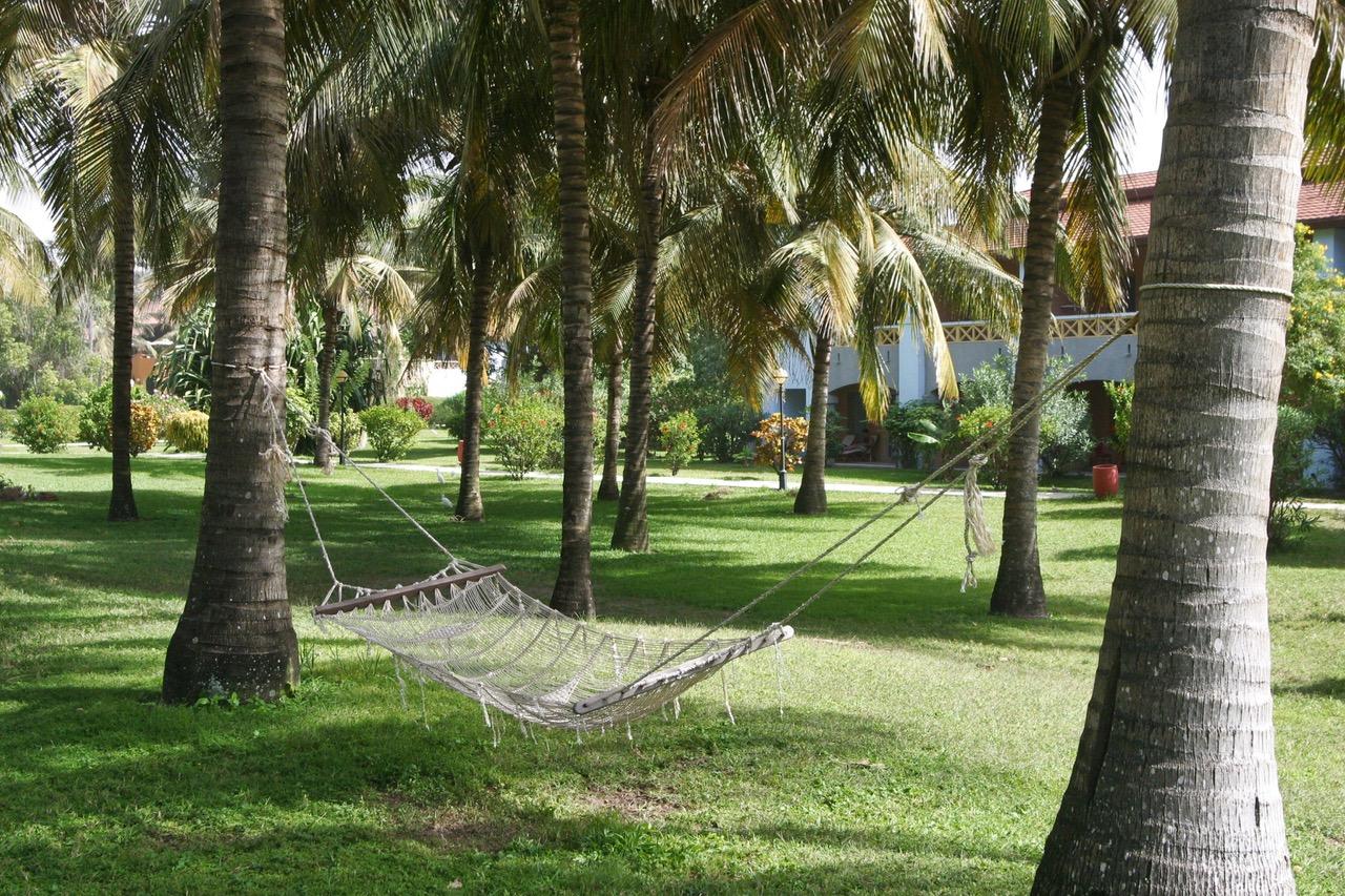 Relaxing hammock in garden in Kololi