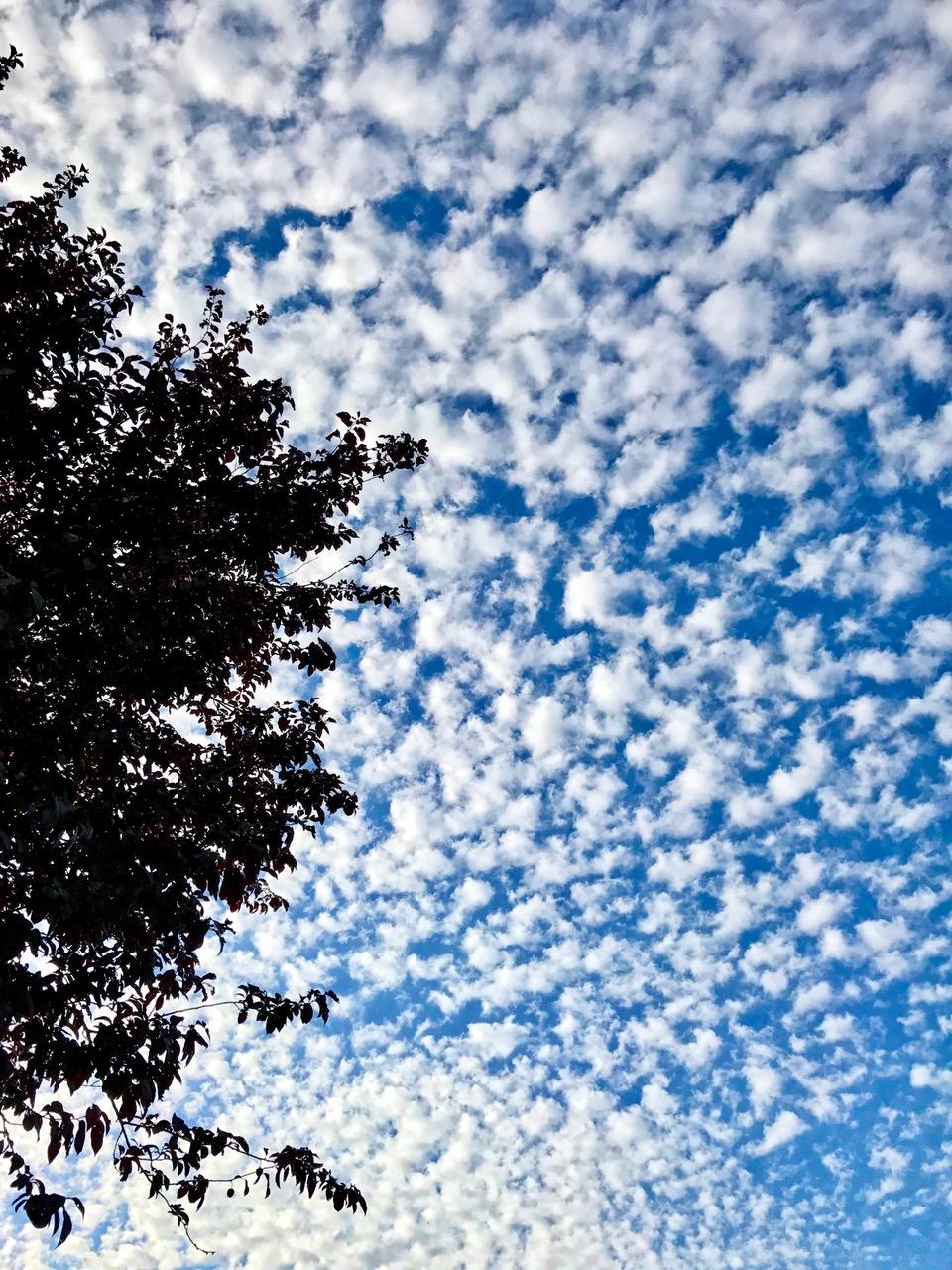Dutch skies, The Netherlands